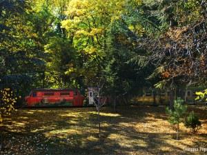 Есенният чар на Младежкия хълм в Пловдив (Фотогалерия)