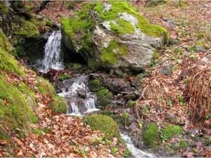 На Разпети петък: От село Мостово до Кръстова гора (Фотогалерия)