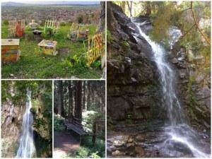 На час път от Пловдив: 5 от най-красивите водопади, които си струва да посетим
