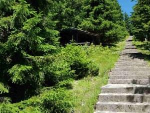 """Високо в Родопите: 600 стъпала водят към връх """"Свобода"""" и тракийско светилище"""