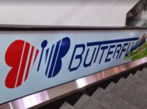 Бътерфлай / Butterfly